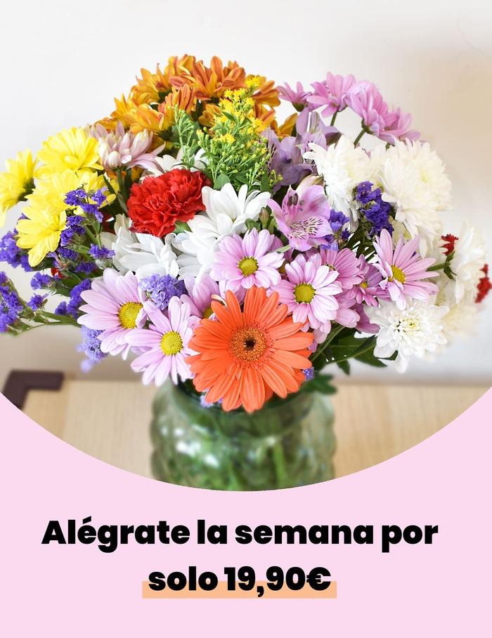 10 Películas en las que las flores son protagonistas 1