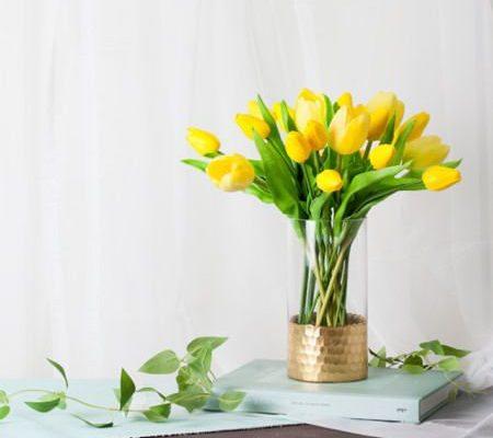 Piur Tulip