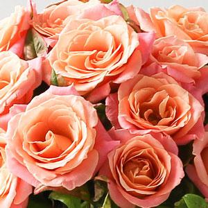 ramo de rosas miss piggy