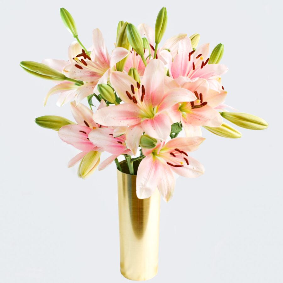 liliums rosas