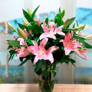 Flores a domicilio en Soria 6