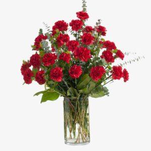 ramo de claveles rojo