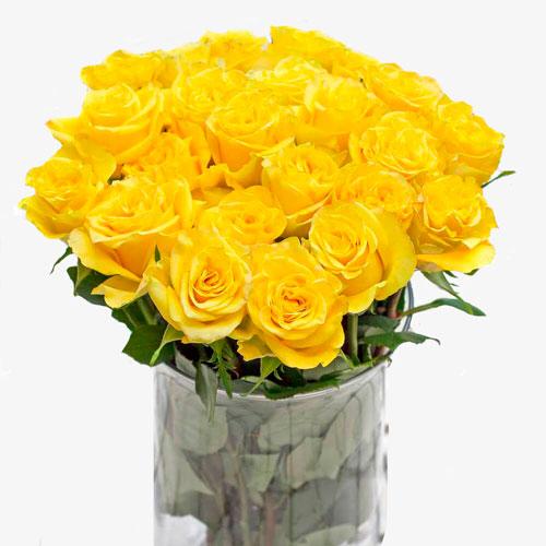 ramo de 25 rosas amarillas