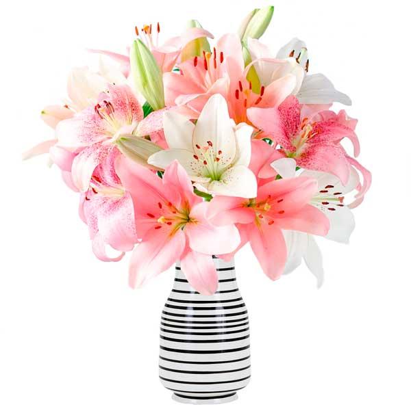 liliums blancos y rosas