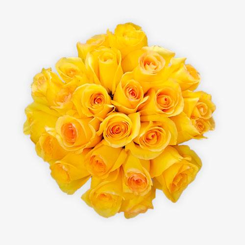 Ramo de rosas amarillas 1