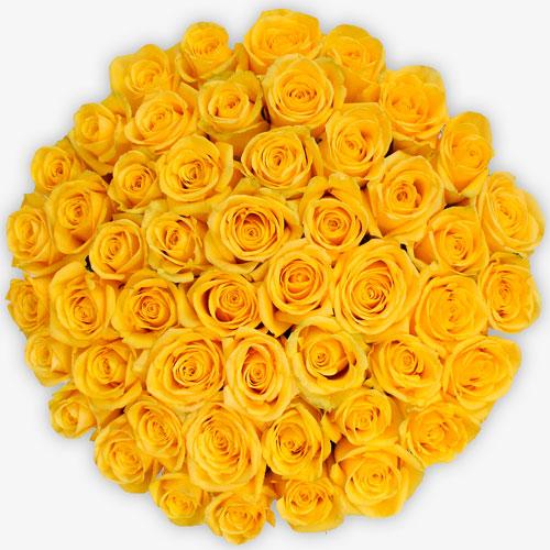 ramo de 50 rosas amarillass