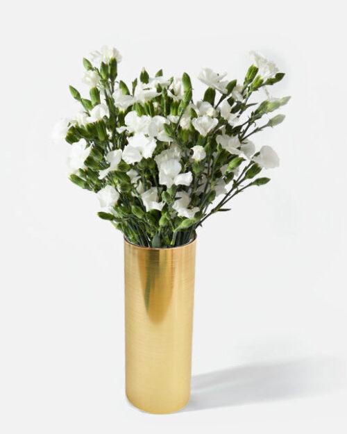clavellinas blancas