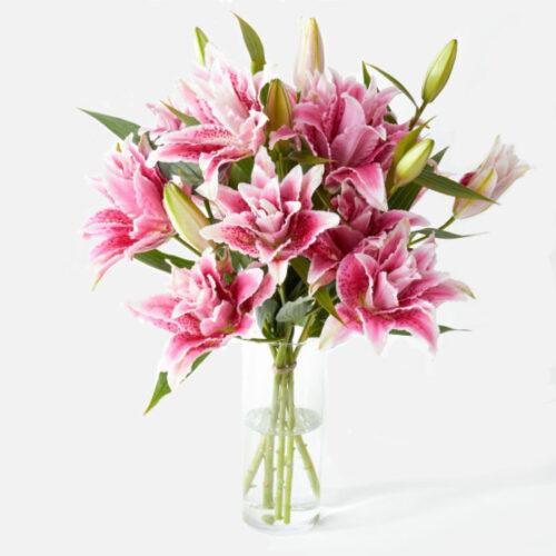 liliums orientales rosas