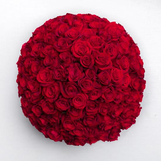 Piur Passion - 100 rosas rojas 1