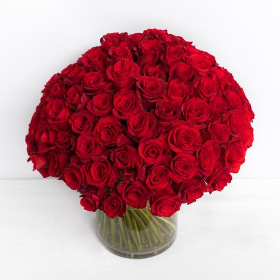 Piur Passion - 100 rosas rojas 2