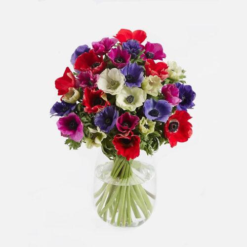 Flores a domicilio en Huelva 1