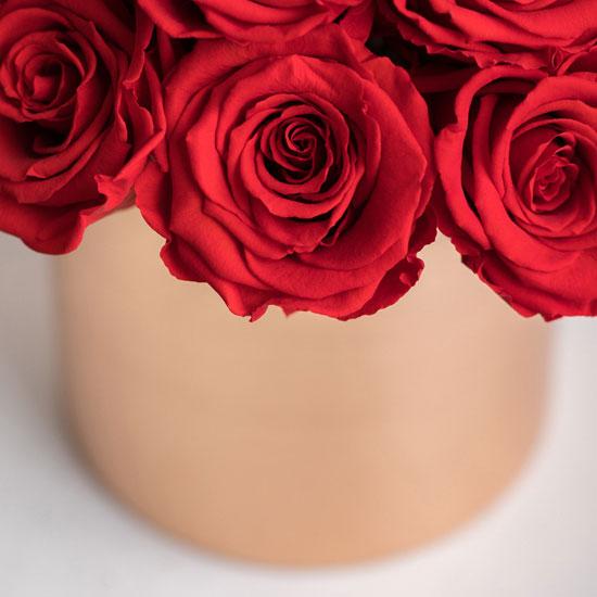 Red poison - 24 rosas rojas 1