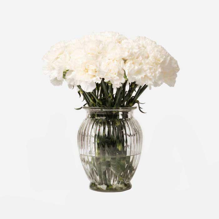 ramo de claveles blancos