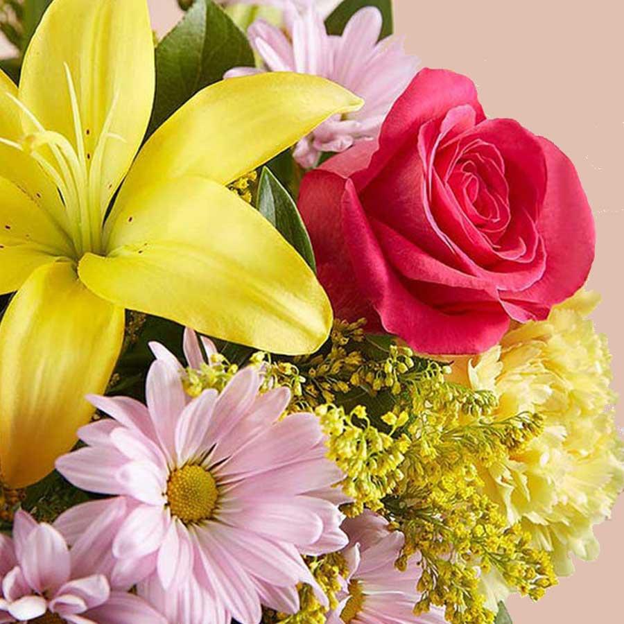 Piur Spring - Lirios y Rosas 2